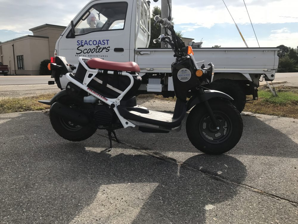 Honda Ruckus For Sale @ Seacoast Scooters